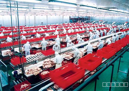 肉制食品厂环境设备如何选择消毒杀菌剂——食品级消毒液